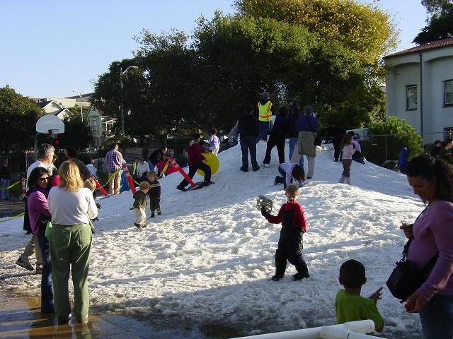 Caledonia Snow In Park