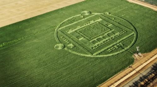 Chualar Crop Circle