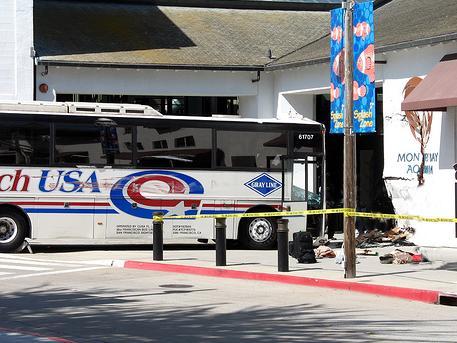 Coach Usa Bus Into Aquarium