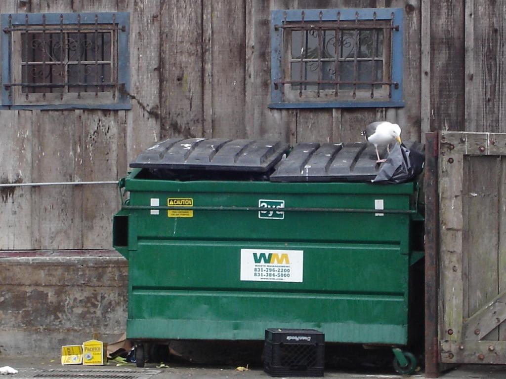Dumpster Fandango 081008