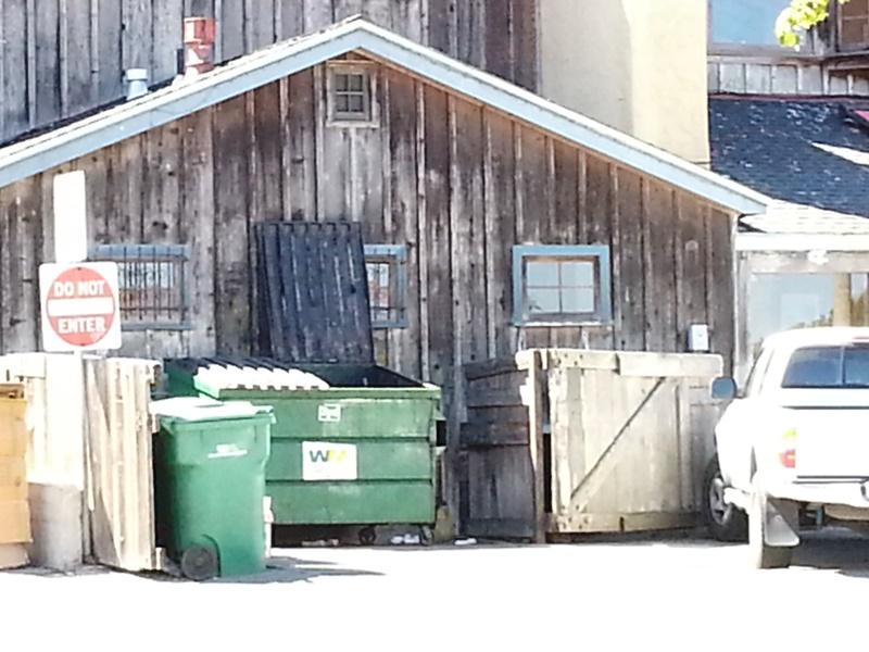 Dumpster Fandango 09