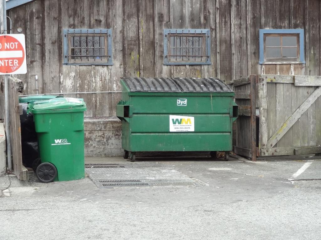 Dumpster Fandango 130803