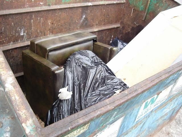 Dumpster Holmans 080720