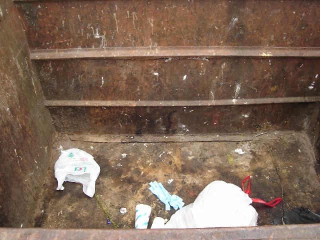 Dumpster Holmans 082408