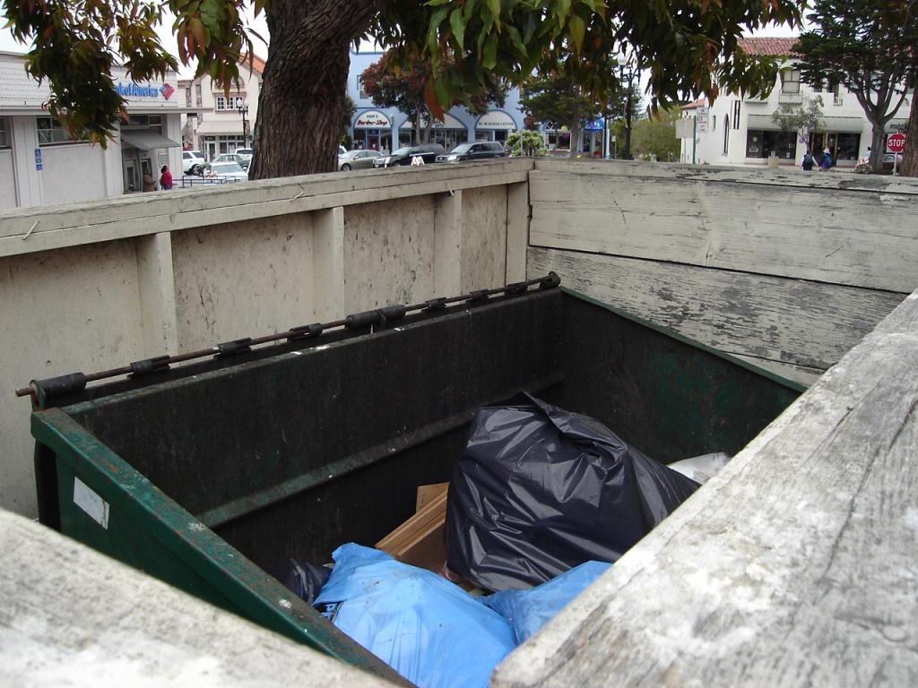 Dumpster Juice Java 080720