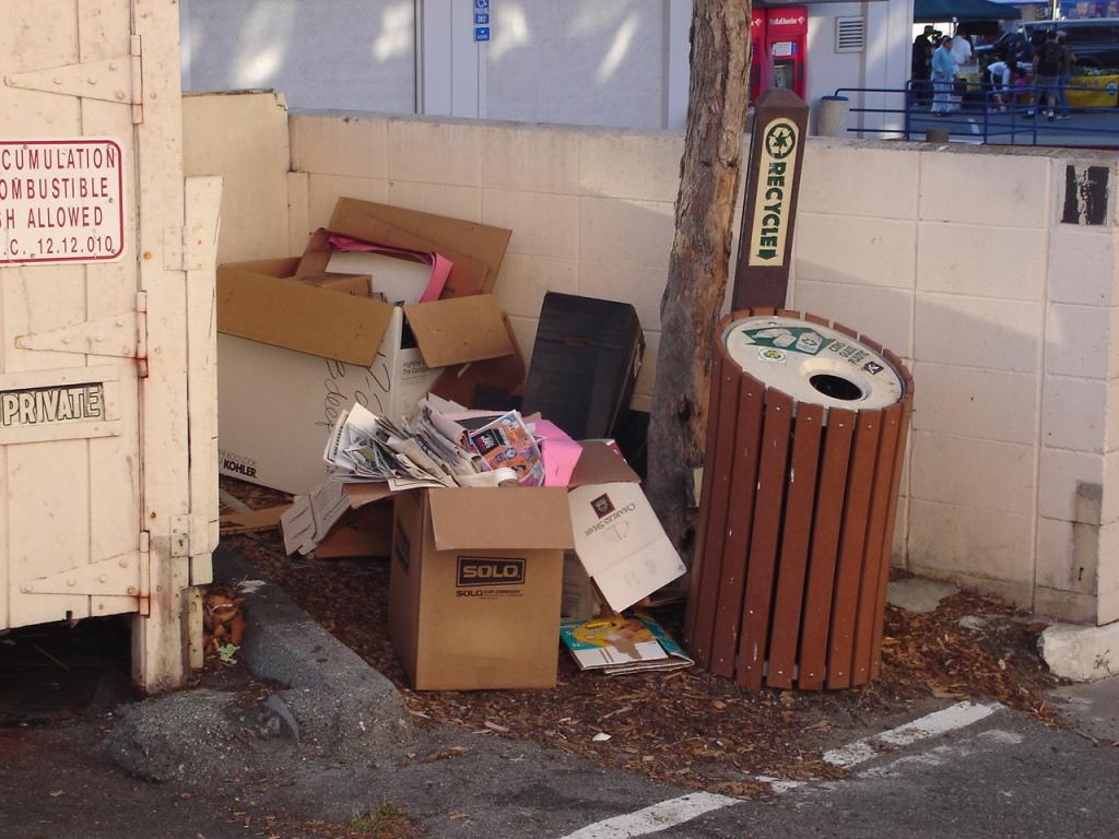 Dumpster Juice Java 080825