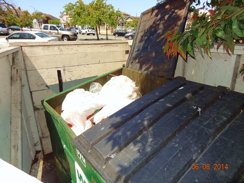 Dumpster JuicenJava 2014 0608