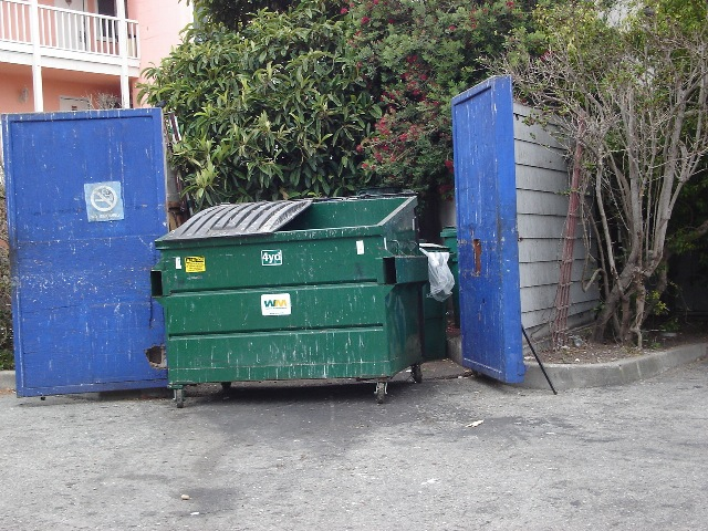 Dumpster Lattitudes 080721