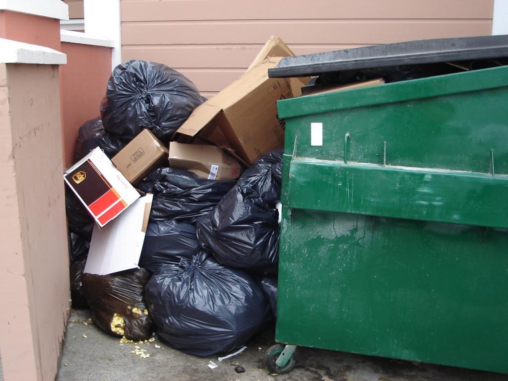 Dumpster Lh Cinema 080720b