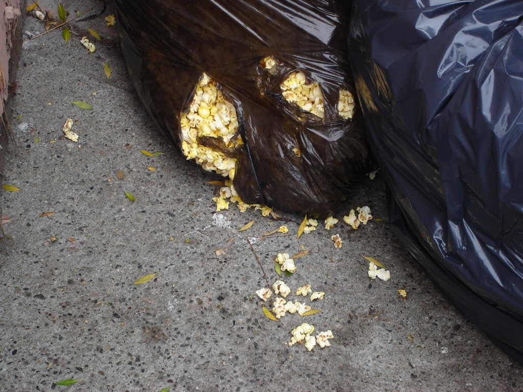 Dumpster Lh Cinema 080720c