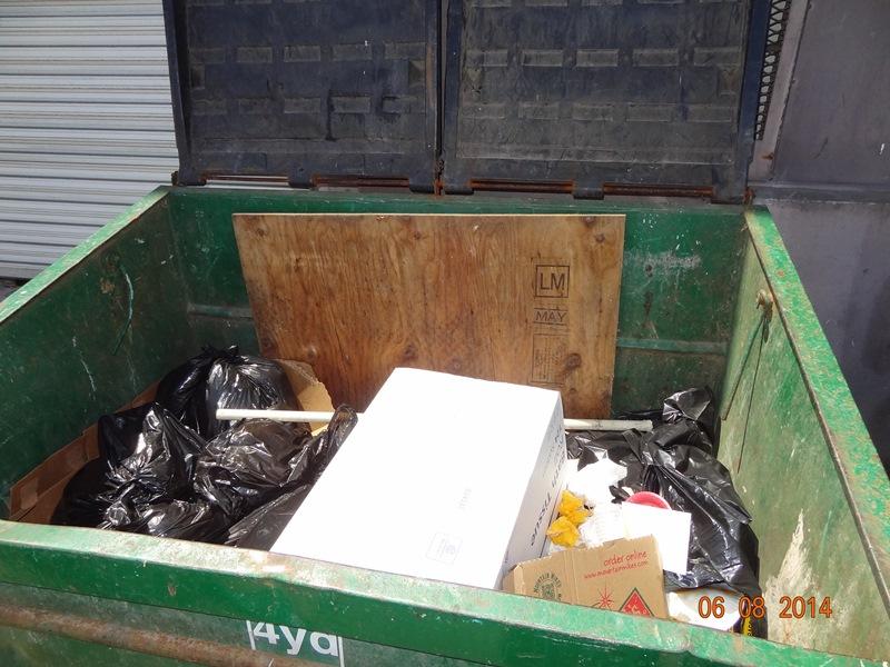 Dumpster Nader Holmans 20140608