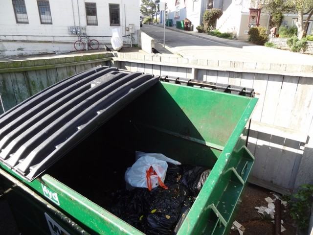 Dumpster Peppersb 171213