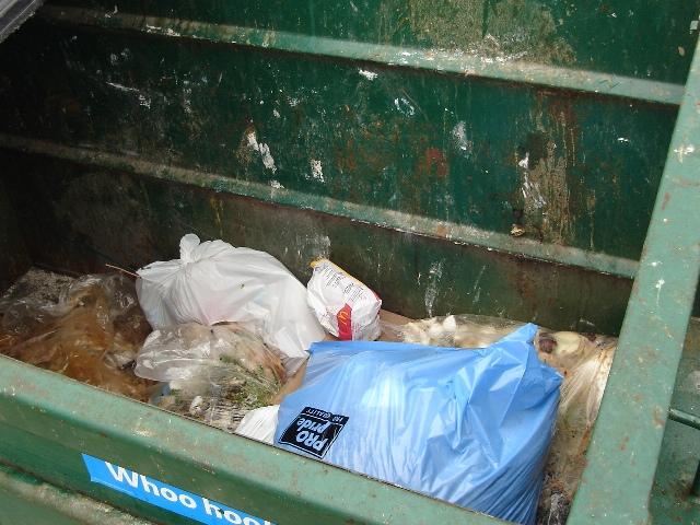 Dumpster Zocalo 080720c