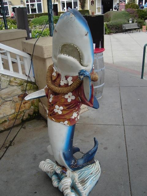 Festive Shark