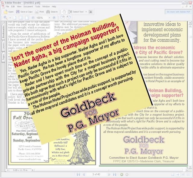 Goldbeck For Mayor
