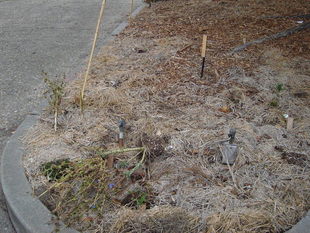 Green Spot Dump 2