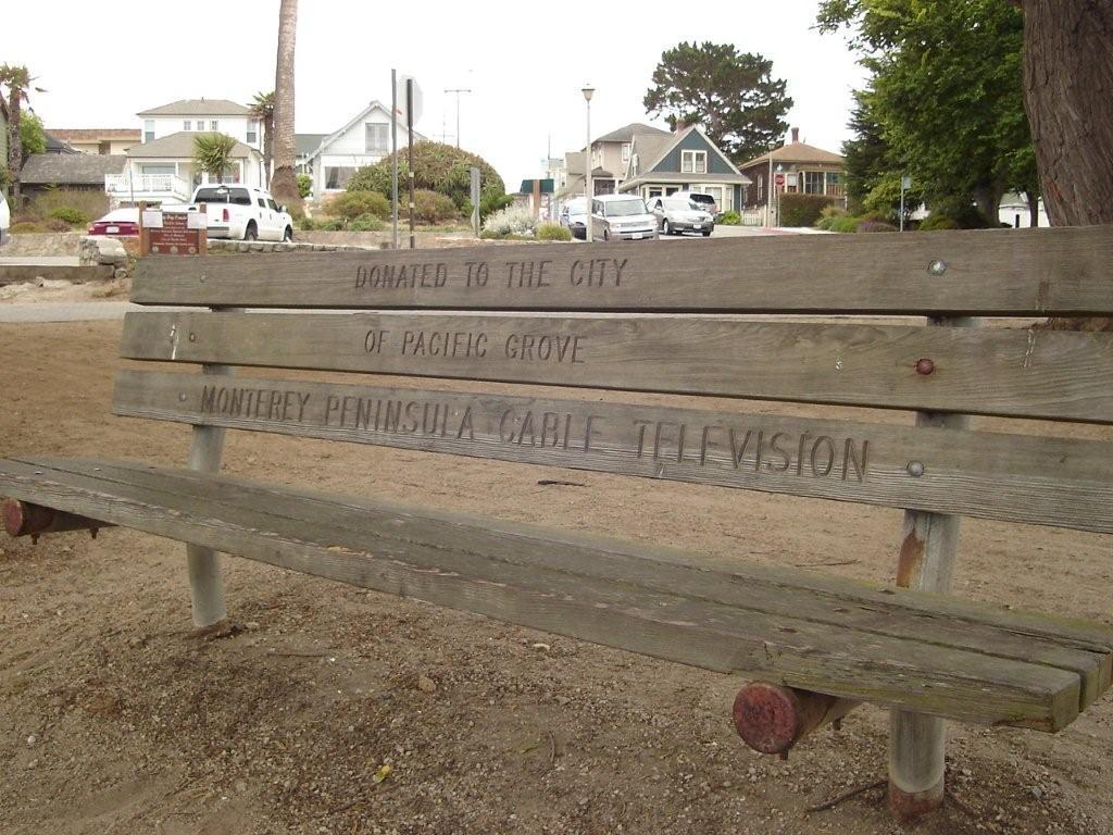 MPTV PG Bench