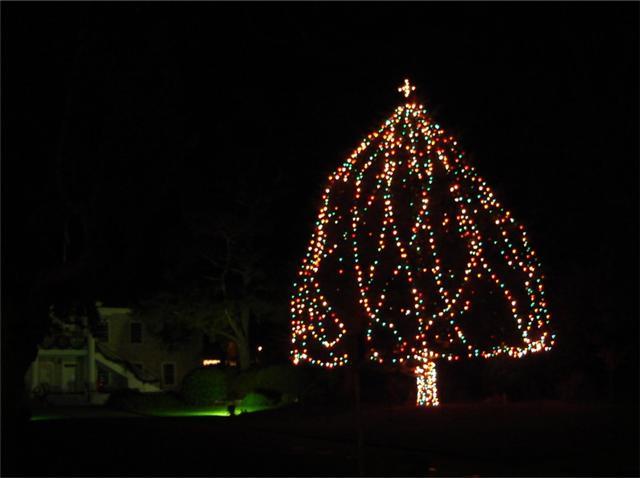 Monterey Xmas tree