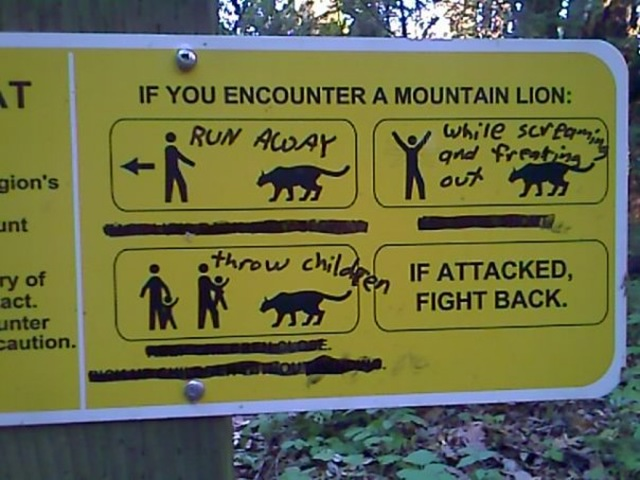 Mountain Lion If Attacked