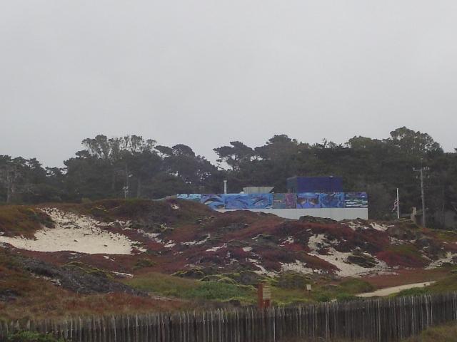 NOAA Murals