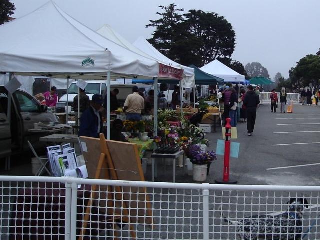 PG Farmers Market81108