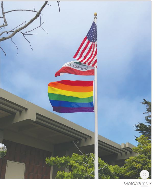 PG PD Pride Flag