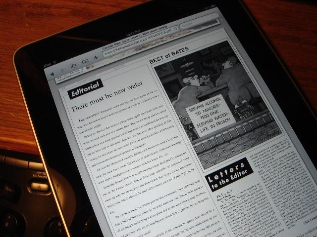 Pine Cone PDF On Ipad