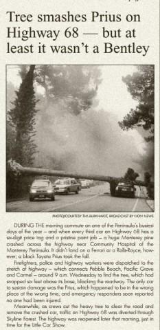 Pine Cone Prius Story