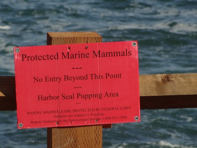 Seal Posse Red Sign
