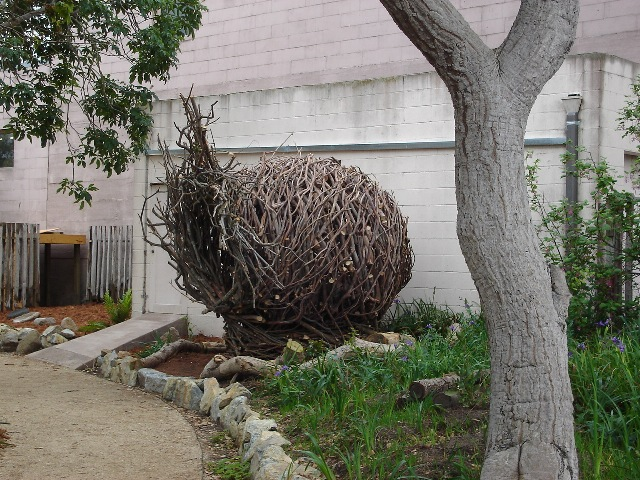 Spirit Nest